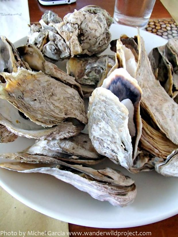 Steamed oysters!